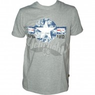 Alpha Industries USAF T-Shirt grau
