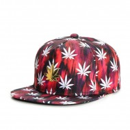 Cayler & Sons GL Best Budz  Snapback Cap red sky/white/gold