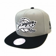 Cleveland Cavaliers Grey Black and White Mono Logo Snapback | NBA | Mitchell & Ness