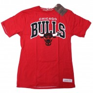 Mitchell & Ness - Chicago Bulls Team Arch Traditional T-Shirt rot